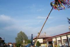 Stavění máje 2009