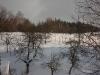 zima-20062007-08